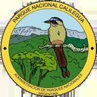 Parque Nacional Calilegua copy